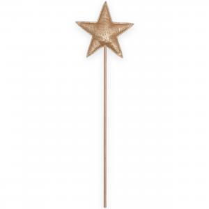 Baguette magique étoile -...